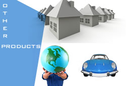 Other Insurance Products